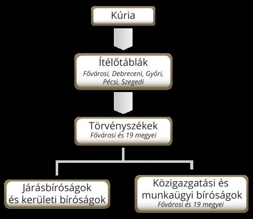 szervezeti_abra_uj_2.png
